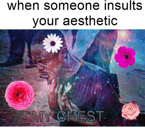 When Someone Insults Your Aesthetic | Aesthetic Meme on SIZZLE