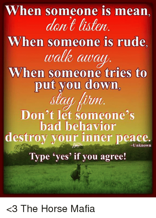 Horses, Memes, and Rude: When someone is mean  dont listen  When someone is rude.  walk awal  When someone tries to  put you down  un  Don't let someone's  bad behavior  destroy your inner peace.  -Unknown  Type yes if you agree! <3 The Horse Mafia