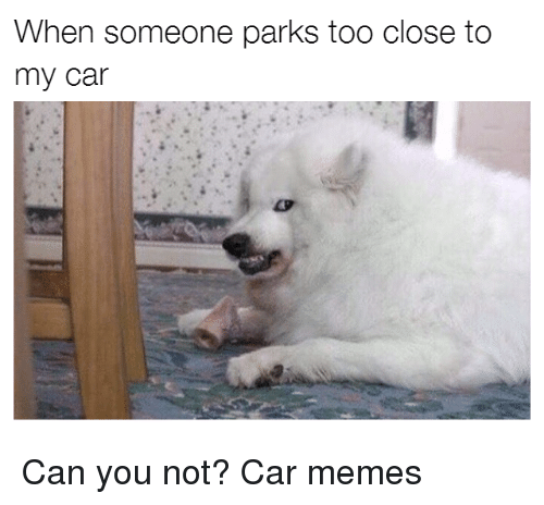 Cars, Can You Not, and Too Close: When someone parks too close to  my car Can you not? Car memes