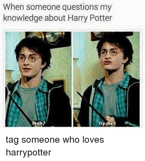Harry Potter Book Knowledge Quiz : Funny harry potter memes of on sizzle gag