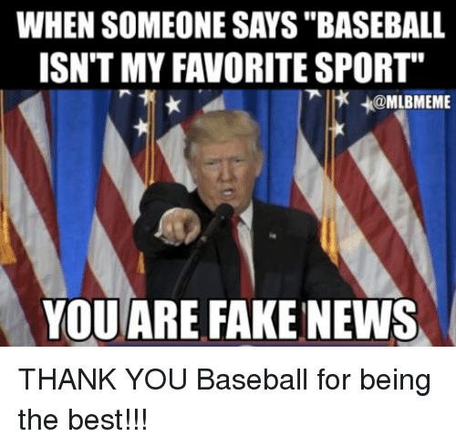 """Baseball, Fake, and Memes: WHEN SOMEONE SAYS """"BASEBALL  ISN'T MY FAVORITE SPORT""""  MLBMEME  YOU ARE FAKE NEWS THANK YOU Baseball for being the best!!!"""
