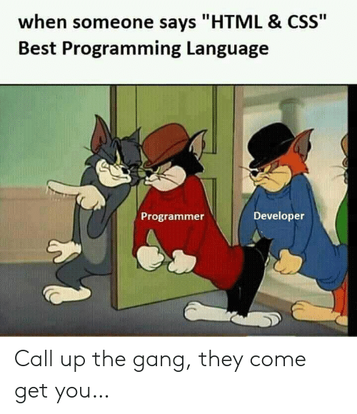 "When Someone Says: when someone says ""HTML & CSS""  Best Programming Language  Developer  Programmer Call up the gang, they come get you…"