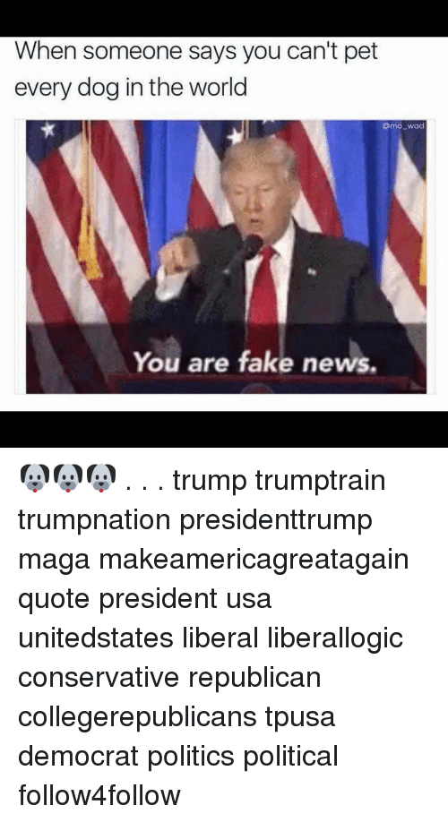 Memes, 🤖, and Usa: When someone says you can't pet  every dog in the world  Omo-wad  You are fake news. 🐶🐶🐶 . . . trump trumptrain trumpnation presidenttrump maga makeamericagreatagain quote president usa unitedstates liberal liberallogic conservative republican collegerepublicans tpusa democrat politics political follow4follow