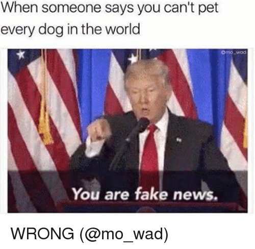 Fake, Memes, and News: When someone says you can't pet  every dog in the world  Onno Mad  You are fake news. WRONG (@mo_wad)