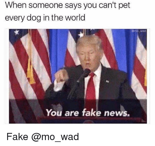 Fake, News, and World: When someone says you can't pet  every dog in the world  omo_wad  You are fake news. Fake @mo_wad