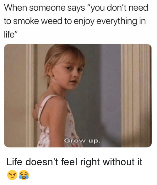 """Funny, Life, and Weed: When someone says """"you don't need  to smoke weed to enjoy everything in  life""""  Grow up. Life doesn't feel right without it 😏😂"""