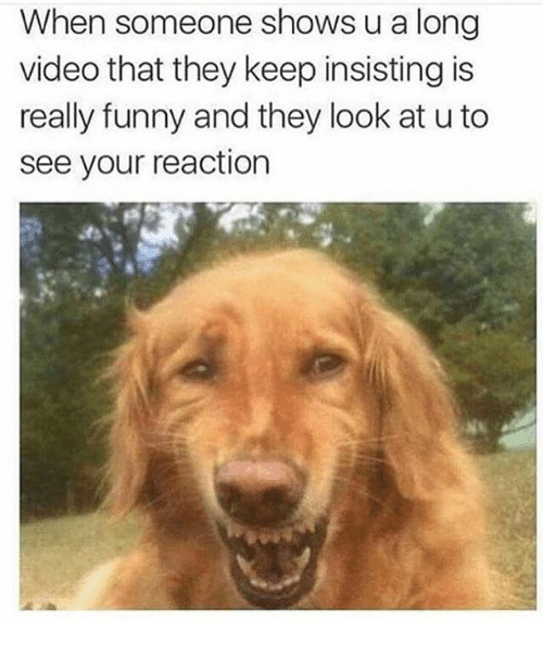 Funny, Video, and They: When someone shows u a long  video that they keep insisting is  really funny and they look at u to  see your reaction  9  is