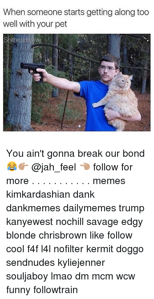 Wcw Funny: When someone starts getting along too  well with your pet  shithead You ain't gonna break our bond😂👉🏽 @jah_feel 👈🏽 follow for more . . . . . . . . . . . memes kimkardashian dank dankmemes dailymemes trump kanyewest nochill savage edgy blonde chrisbrown like follow cool f4f l4l nofilter kermit doggo sendnudes kyliejenner souljaboy lmao dm mcm wcw funny followtrain