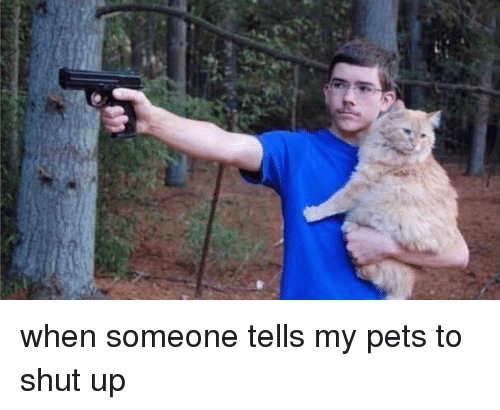 Shut Up, Pets, and Girl Memes: when someone tells my pets to shut up