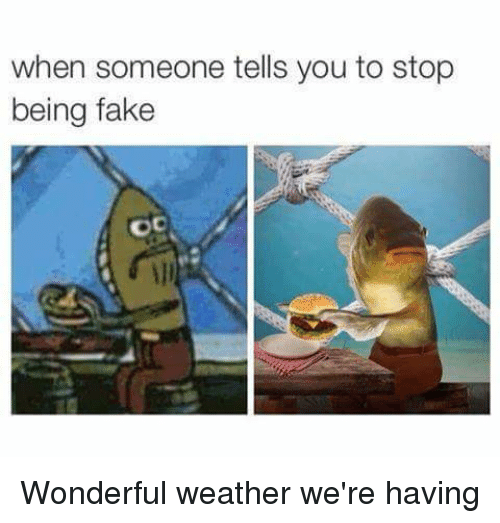 Fake, SpongeBob, and Weather: when someone tells you to stop  being fake  OC Wonderful weather we're having