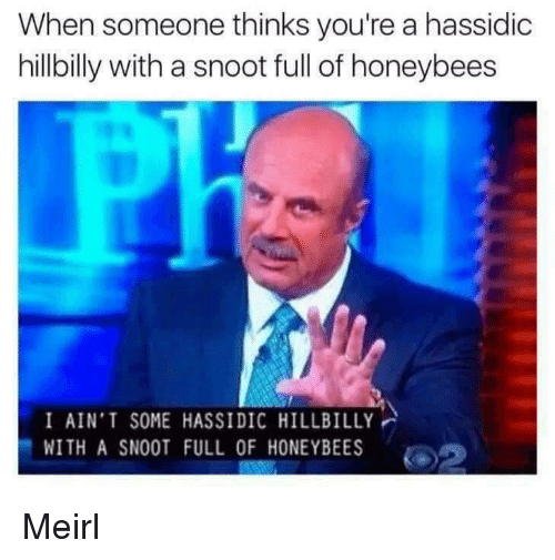 hillbilly: When someone thinks you're a hassidic  hillbilly with a snoot full of honeybees  I AIN'T SOME HASSIDIC HILLBILLY  WITH A SNOOT FULL OF HONEYBEES Meirl