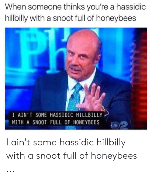 Hillbilly Memes: When someone thinks you're a hassidic  hillbilly with a snoot full of honeybees  I AIN'T SOME HASSIDIC HILLBILLY  WITH A SNOOT FULL OF HONEYBEES I ain't some hassidic hillbilly with a snoot full of honeybees ...