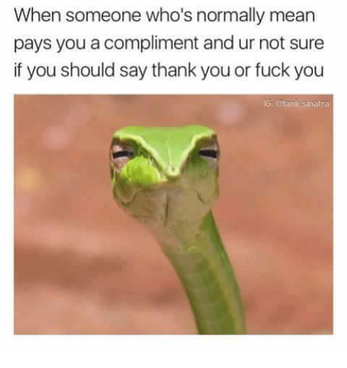 Fuck You, Fucking, and Memes: When someone who's normally mean  pays you a compliment and ur not sure  if you should say thank you or fuck you  IG otank sinatra