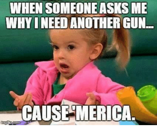 memes: WHEN SOMEONEASKSME  WHY INEED ANOTHER GUN.  CAUSE MERICA.