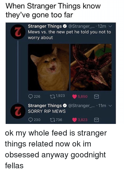Memes, Sorry, and 🤖: When Stranger Things knovw  they've gone too far  Stranger Things. @Stranger_.... 12m ﹀  Mews vs. the new pet he told you not to  worry about  226ロ1,923 5,850  Stranger Things @Stranger_.. .11m v  SORRY RIP MEWS  0230  736  3823  3 ok my whole feed is stranger things related now ok im obsessed anyway goodnight fellas