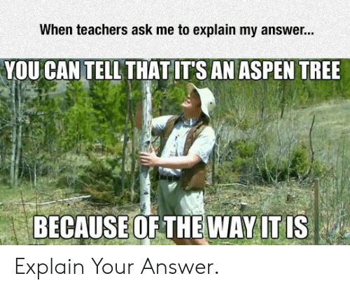aspen tree: When teachers ask me to explain my answer...  YOU CAN TELL THAT ITS AN ASPEN TREE  BECAUSE OF THEWAY IT IS Explain Your Answer.