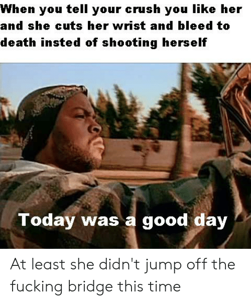 today was a good day: When  tell  your crush you like her  you  and she cuts her wrist and bleed to  death insted of shooting herself  Today was a good day At least she didn't jump off the fucking bridge this time