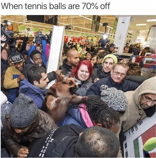 Tennis, Balls, and Tennis Balls: When tennis balls are 70% off  NETS