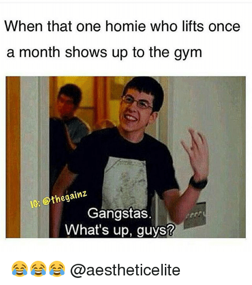 Gym, Homie, and Once: When that one homie who lifts once  a month shows up to the gym  the gainz  Gangstas.  What's up, guys? 😂😂😂 @aestheticelite