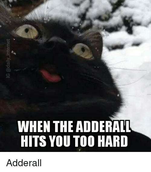when the adderall hits you too hard adderall 2562921 when the adderall hits you too hard adderall lolcats meme on sizzle,Adderall Meme
