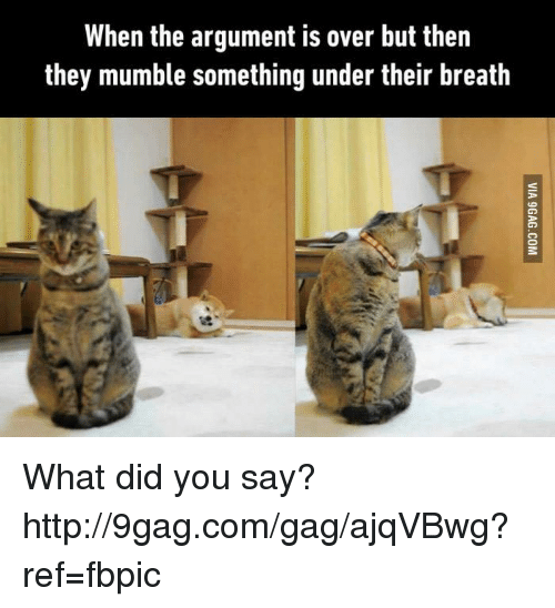 what did you say: When the argument is over but then  they mumble something under their breath What did you say? http://9gag.com/gag/ajqVBwg?ref=fbpic