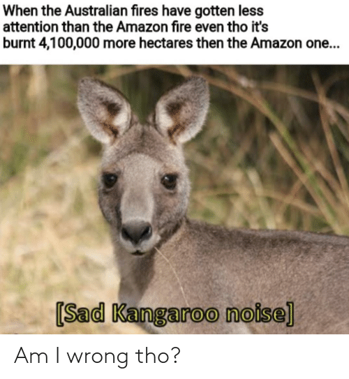 burnt: When the Australian fires have gotten less  attention than the Amazon fire even tho it's  burnt 4,100,000 more hectares then the Amazon one...  [Sad Kangaroo noise] Am I wrong tho?