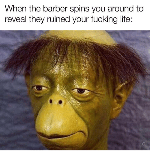 Barber, Fucking, and Life: When the barber spins you around to  reveal they ruined your fucking life: