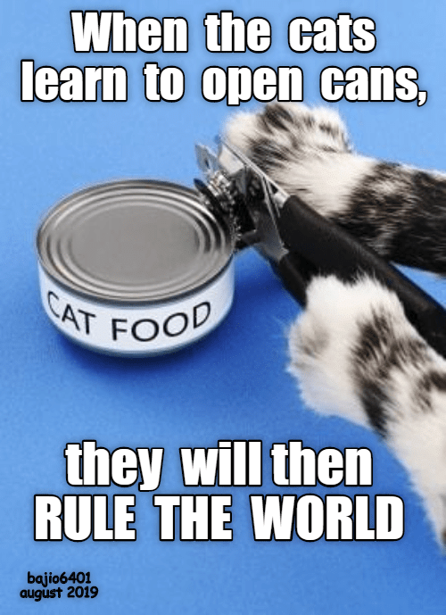 Cans: When the cats  learn to open cans,  CAT FOO  they will then  RULE THE WORLD  bajio6401  august 2019