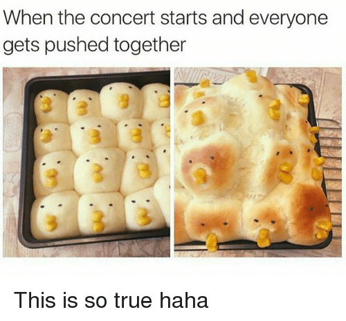Memes, True, and Haha: When the concert starts and everyone  gets pushed together This is so true haha