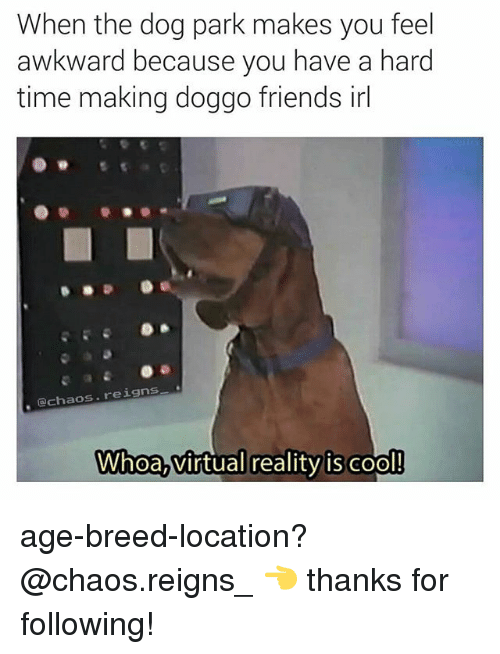 Friends, Memes, and Virtual Reality: When the dog park makes you feel  awkward because you have a hard  time making doggo friends irl  chaos. reigns  Whoa,virtual reality is cool! age-breed-location? @chaos.reigns_ 👈 thanks for following!