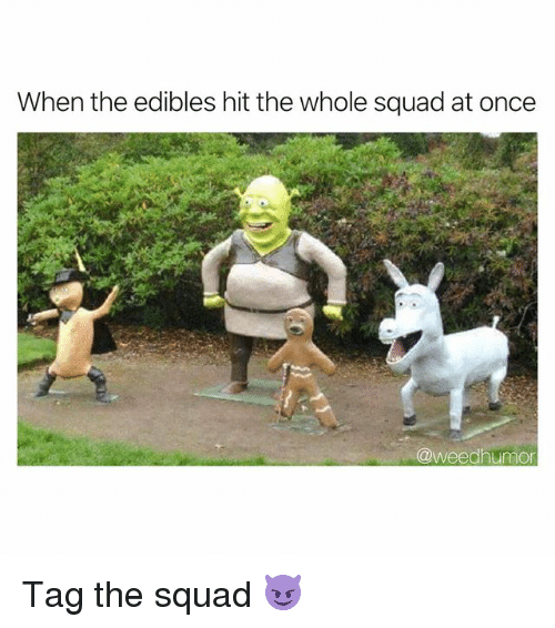 Squad, Weed, and Marijuana: When the edibles hit the whole squad at once  @weedhumon Tag the squad 😈