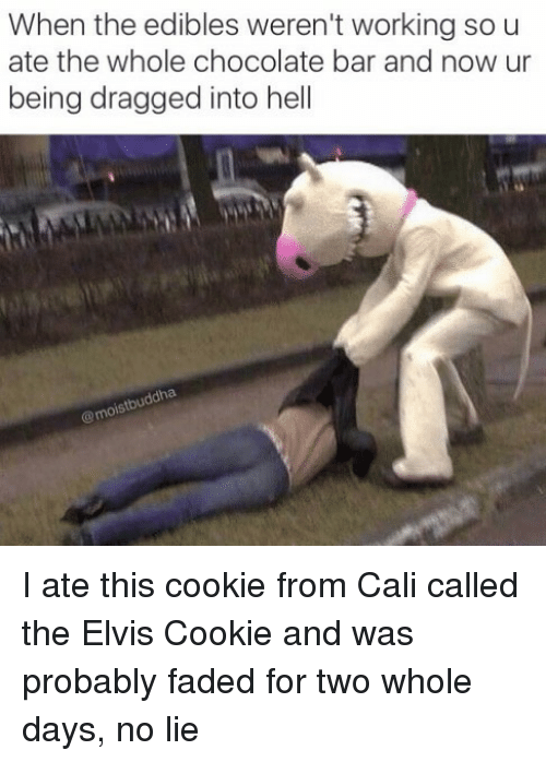 Faded, Chocolate, and Hell: When the edibles weren't working sou  ate the whole chocolate bar and now ur  being dragged into hell I ate this cookie from Cali called the Elvis Cookie and was probably faded for two whole days, no lie