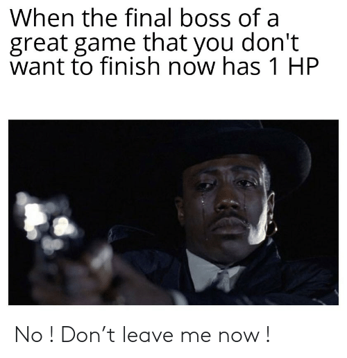Final boss: When the final boss of a  great game that you don't  want to finish now has 1 HP No ! Don't leave me now !