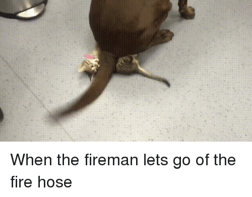 Fire, Fireman, and Let's: When the fireman lets go of the fire hose