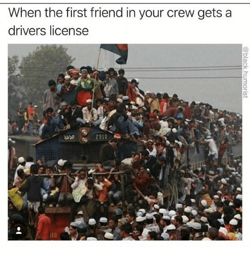 Memes, 🤖, and Friend: When the first friend in your crew getsa  drivers license  10