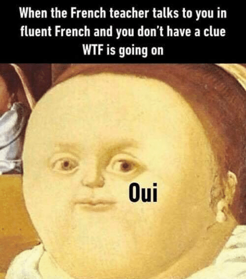 Wtf Is Going On: When the French teacher talks to you in  fluent French and you don't have a clue  WTF is going on  Oui