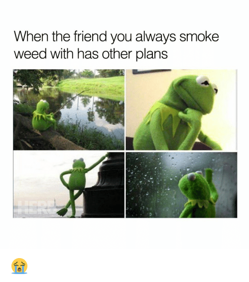Friends, Memes, and Smoking: When the friend you always smoke  weed with has other plans 😭