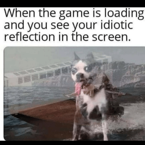 reflection: When the game is loading  and you see your idiotic  reflection in the screen.