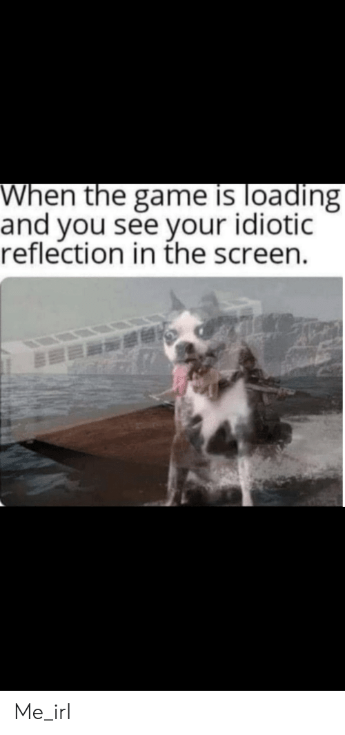 reflection: When the game is loading  and you see your idiotic  reflection in the screen. Me_irl