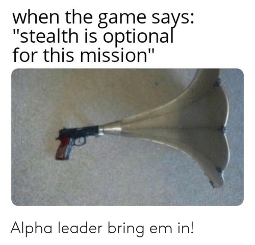 """stealth: when the game says:  """"stealth is optional  for this mission"""" Alpha leader bring em in!"""