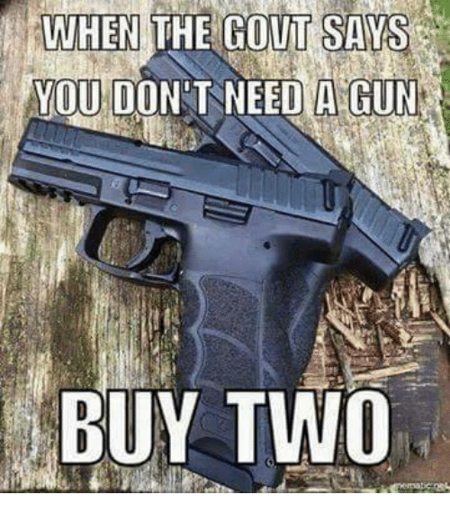 Memes, 🤖, and Gout: WHEN THE GOUT SAYS  YOU DON T NEED A GUN  BUY TWO