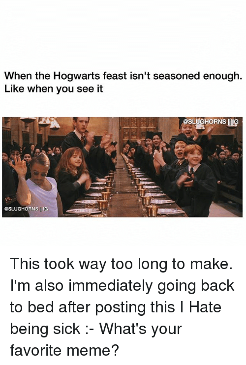 Meme, Memes, and When You See It: When the Hogwarts feast isn't seasoned enough.  Like when you see it  asLUGHORNs G  @SLUGHORNS ll IG This took way too long to make. I'm also immediately going back to bed after posting this I Hate being sick :- What's your favorite meme?
