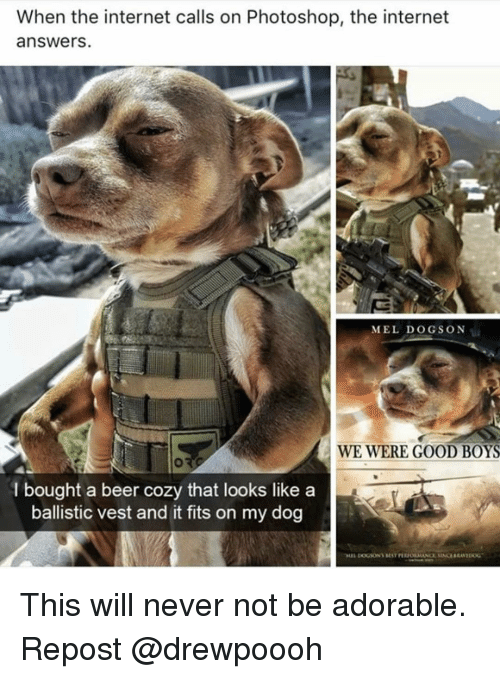ballistic: When the internet calls on Photoshop, the internet  answers.  MEL DOGSON  WE WERE GOOD BOYS  l bought a beer cozy that looks like a  ballistic vest and it fits on my dog This will never not be adorable. Repost @drewpoooh