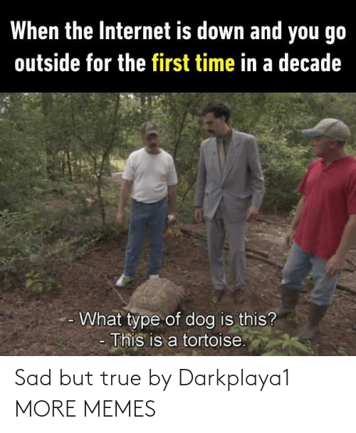 Sad But True: When the Internet is down and you go  outside for the first time in a decade  What type of dog is this?  This is a tortoise. Sad but true by Darkplaya1 MORE MEMES