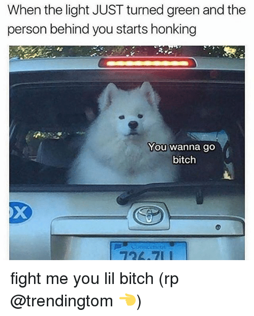 Bitch, Memes, and Fight: When the light JUST turned green and the  person behind you starts honking  You wanna go  bitch fight me you lil bitch (rp @trendingtom 👈)