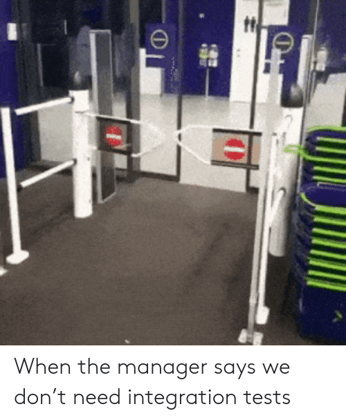 T Need: When the manager says we don't need integration tests