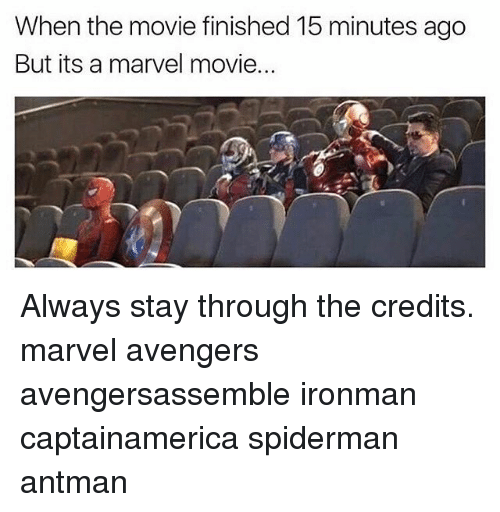Memes, Antman, and Avengers: When the movie finished 15 minutes ago  But its a marvel movie.. Always stay through the credits. marvel avengers avengersassemble ironman captainamerica spiderman antman