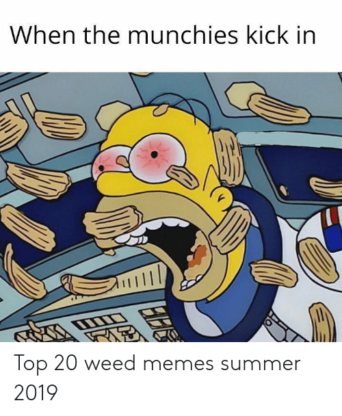 Memes, Munchies, and Weed: When the munchies kick in Top 20 weed memes summer 2019