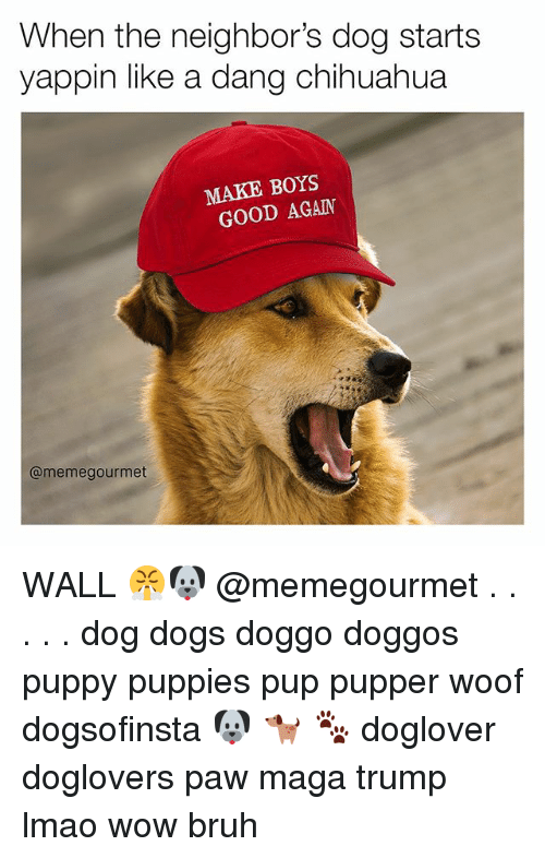 walls: When the neighbor's dog starts  yappin like a dang chihuahua  MAKE BOYS  GOOD AGAIN  @meme gourmet WALL 😤🐶 @memegourmet . . . . . dog dogs doggo doggos puppy puppies pup pupper woof dogsofinsta 🐶 🐕 🐾 doglover doglovers paw maga trump lmao wow bruh