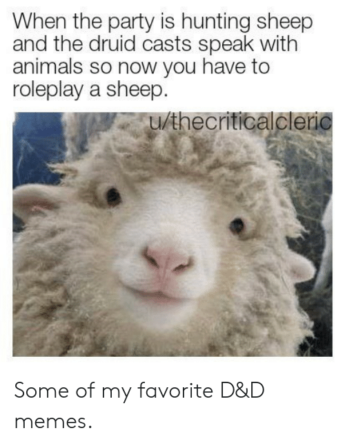 the party: When the party is hunting sheep  and the druid casts speak with  animals so now you have to  roleplay a sheep.  u/thecriticalcleric Some of my favorite D&D memes.